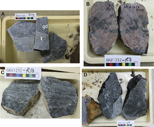 Photographs of cut slab surfaces taken onboard the R/V Yokosuka shortly following Shinkai 6500 diving illustrating the samples studied here. (A) 6K1236R14; t—tonalite; qd—quartz diorite. (B) Hornblende garnetite 6K1232R7. (C) Epidote amphibolite 6K1232R13. (D) Epidote amphibolite 6K1232R16.