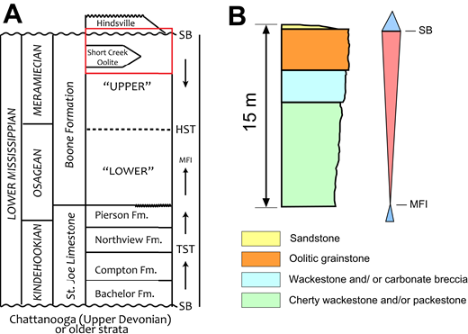 (A) Generalized lithostratigraphy of Lower Mississippian subsystem in northwest Arkansas (modified after Handford and Manger, 1990; Manger and Shelby, 2000). Red box denotes the stratigraphic position of the rocks in War Eagle quarry. (B) Coarsening upward lithofacies observed in the quarry. SB—sequence boundary; TST—transgressive systems tract; HST—high stand systems tract; MFI—maximum flooding interval.