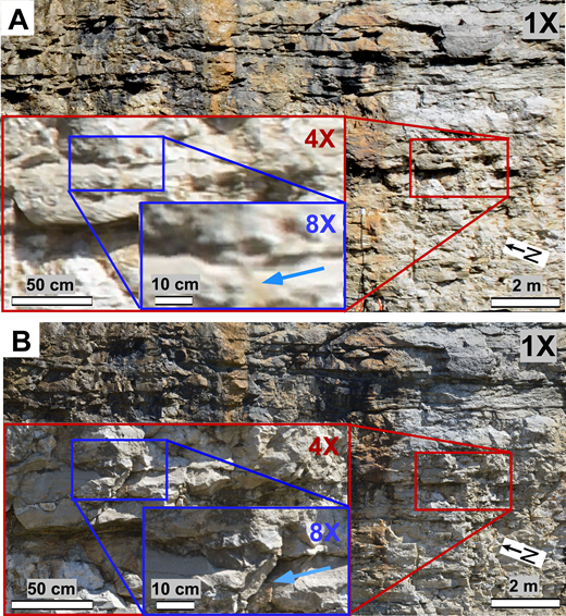 Digital outcrop model examples comparing the resolution of the texture maps generated using (A) the terrestrial laser scanning (TLS)–mounted Nikon D800 (36 megapixel) digital camera and (B) Gigapan robotic camera mount equipped with a Nikon D3200 digital camera. Images were exported from a 3D visualization tool with different zoom levels. Note that gigapixel textures in (B) stay sharp well beyond the 8× zoom level, whereas on-scanner camera textures become pixelated. Arrows point to a fracture obstructed from the on-scanner camera texture in (A), whereas it is clearly distinguishable within the gigapixel texture map in (B).
