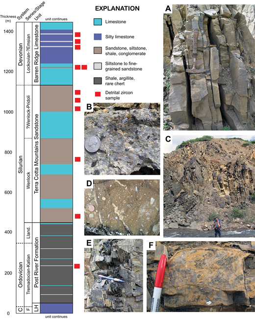 Dillinger subterrane stratigraphy and outcrop photographs. Generalized stratigraphic column is modified from Churkin and Carter (1996) and Bundtzen et al. (1994); thickness of limestone and siltstone to sandstone beds in Post River Formation, and of siltstone and sandstone beds in Barren Ridge Limestone, is exaggerated, and position of these beds is schematic. Detrital zircon sample position within the stratigraphic column is approximate. C—Cambrian; F—Furongian; Lland.—Llandovery; LH—Lyman Hills Formation. (A, B) Barren Ridge Limestone: typical fine-grained limestone (A) and rare limestone-chert pebble conglomerate (B). (C, D) Terra Cotta Mountains Sandstone: fine- to coarse-grained, variously calcareous turbidites (C) and conglomeratic bed (D) that contains clasts of oncoid grainstone (seen in Fig. 11C). (E) Graptolitic dark shale, Post River Formation. (F) Cross-laminated silty limestone, Lyman Hills Formation.