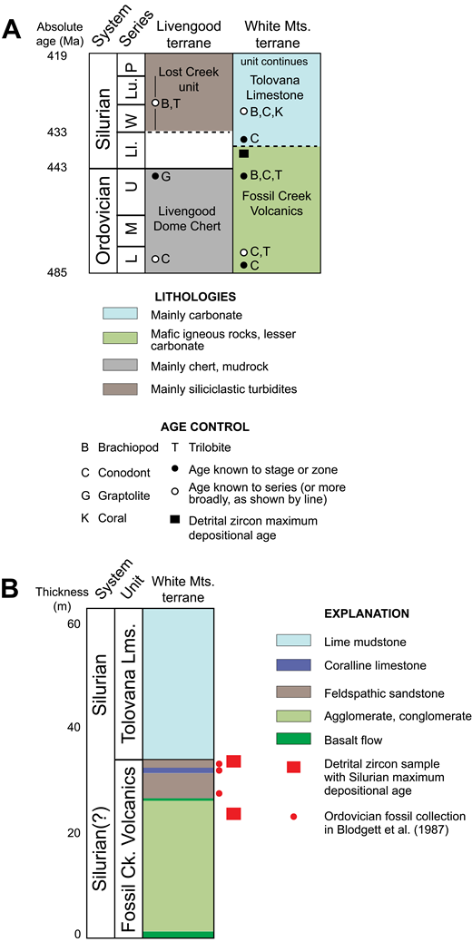 (A) Generalized stratigraphy of lower Paleozoic rocks in the Livengood and White Mountains terranes; data are from Chapman et al. (1980), Blodgett et al. (1987), Weber et al. (1994), Dumoulin and Harris (2012), Dumoulin et al. (2014a). Age of Fossil Creek Volcanics was modified on the basis of detrital zircon data in this study. L—Lower; M—Middle; U—Upper; Ll.—Llandovery; W—Wenlock; Lu.—Ludlow; P—Pridoli. (B) Section A of Blodgett et al. (1987) and Wheeler et al. (1987), showing approximate stratigraphic positions of detrital zircon samples in this study and Ordovician fossil collections in Blodgett et al. (1987). Lms.—Limestone; Ck.—Creek; Mts.—Mountains.