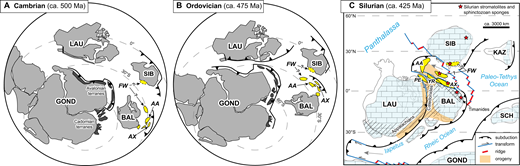 """(A) Cambrian, (B) Ordovician, and (C) Silurian paleogeographic settings of Cordilleran exotic terranes of """"Arctic"""" affinity. Cambrian and Ordovician diagrams are adapted from Beranek et al. (2013a) and are modified to show our preferred alternative positions of the Farewell terrane (solid outline) with respect to Arctic Alaska, Alexander, and other peri-Baltic terranes. Silurian reconstruction is adapted from Colpron and Nelson (2011) and is modified (after Koroleski, 2014) to show our preferred alternative position of the Farewell terrane (solid outline) with respect to the Alexander terrane, Baltica, and the Caledonide orogen. Craton abbreviations: BAL—Baltica; GOND—Gondwana; KAZ—Kazhakstania; LAU—Laurentia; SCH—South China; SIB—Siberia. Terrane abbreviations: AA—Arctic Alaska; AX—Alexander; FW—Farewell; PE—Pearya; YR—Yreka."""