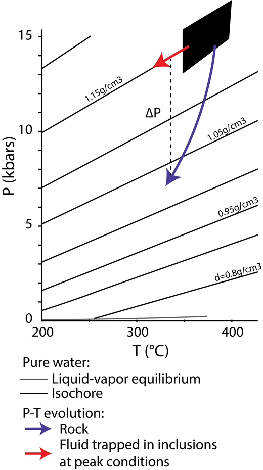 Concomitant evolution of rock (blue) and fluid inclusion (red) pressure-temperature (P-T) conditions during exhumation. The steeper slope of rock P-T path results in large overpressure ΔP between the trapped fluid and the surrounding medium, eventually leading in the general case to reequilibrating the fluid. Rock peak conditions (black domain) and exhumation path from the Schistes Lustrés (SL) (Agard et al., 2000), fluid isochores calculated from Wagner and Pruss (2002) for pure water, with associated density. The isochore line passing through the peak P-T conditions corresponds to a T gradient of ∼12 °C/km.