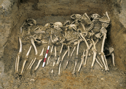Mass grave at Spitalfields, London, ca. CE 1258. Photo courtesy of MOLA (Museum of London Archaeology). Many of the deaths are thought to be from crop failure and famine, greatly aggravated by the 1257 eruption of Rinjani (Samalas) Volcano.