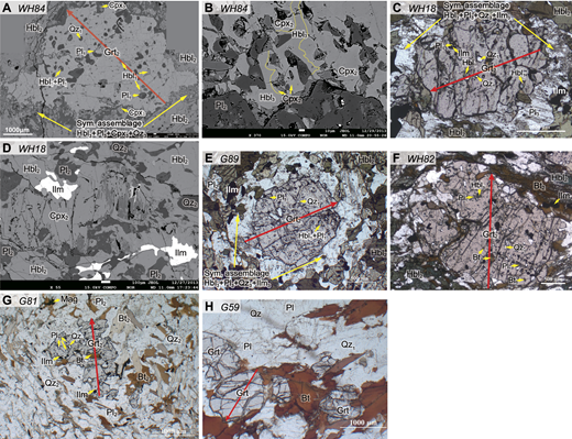 (A–D) Garnet-clinopyroxene amphibolite (samples WH84 and WH18) preserves three generations of metamorphic assemblages. A, B, and D are backscattered electron photographs, and A is an automatic synthesis owing to the oversized garnet under the electron microscope. (E) Garnet amphibolite (sample G89) with three generations of metamorphic assemblages. (F) Garnet-biotite amphibolite (sample WH82) with two generations of metamorphic assemblages. (G–H) Microphotographs of metapelites. See text for detailed explanation. The red lines with arrows indicate the analytical profiles of the garnet porphyroblasts depicted in Figure 6. Mineral abbreviations are after Whitney and Evans (2010).