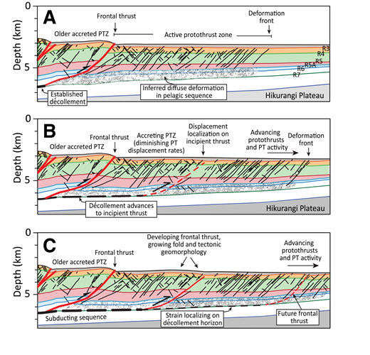 (A–C) Conceptual diagram illustrating three stages in the evolution of the Hikurangi protothrust zone (PTZ), forward propagation of the décollement, and growth of the frontal thrust faults with associated control on the morphology of the seafloor. PT—protothrust.