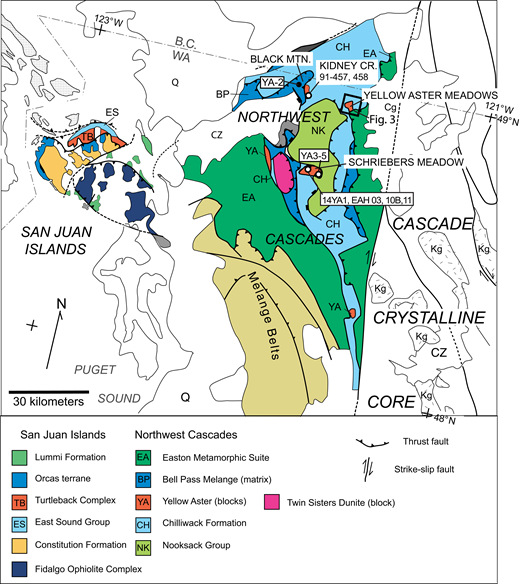 Geologic setting of Chilliwack composite terrane showing Northwest Cascades thrust system and correlative San Juan Islands thrust system. Uncolored areas are unrelated and/or younger units. Abbreviations not indicated in legend: B.C.—British Columbia, CZ—Cenozoic cover, Q—Quaternary units, Cg—Cenozoic granitic rocks, Kg—Cretaceous granitic rocks. WA—Washington; MTN.—mountain; CR.—Creek. Chilliwack composite terrane includes CH, ES, TB, and YA. Box shows location of map in Figure 3. Samples not shown in Figure 3 are labeled here; open circles are from this study, closed circle is from Brown and Gehrels (2007). Map is modified from Brown et al. (2010).