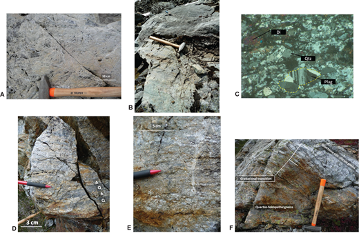 Photographs of representative Yellow Aster Complex (YAC) paragneiss samples. (A) Outcrop photograph of folded calc-silicate paragneiss. Gneissic layers are ∼1–2 mm thick. Photograph is from the Yellow Aster Butte study area near sample 14YA19. (B) Block of calc-silicate paragneiss with marble contact. Marble is above the hammer. Hammer is 38 cm long. Photo from the Schriebers Meadow field area. Sample EAH11. (C) Sample EAH39, cross-polarized light photomicrograph of calc-silicate paragneiss. Foliated texture contains fine-grained recrystallized quartz, coarse-grained rounded quartz (Qtz), and subangular plagioclase (Plag) grains. A polycrystalline grain is outlined. Coarse rounded grains are interpreted as relict detrital grains. Di—Diopside. (D) Arkosic paragneiss (14YA28) with alternating feldspar-rich (A) and quartz-rich (Q) layers, Yellow Aster Meadows. (E) Arkosic paragneiss showing compositional layering and a variety of grain sizes. White and coarse grains are plagioclase. (F) A gradational contact between quartzofeldspathic and quartzose calc-silicate paragneisses, interpreted as premetamorphic. Hammer is 38 cm long.