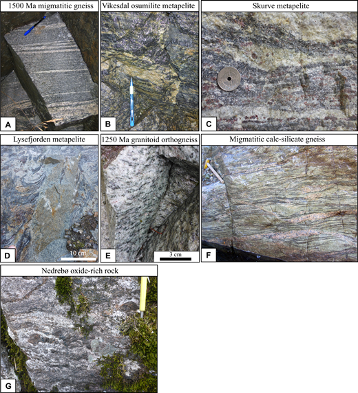 Field photos of the investigated high-temperature (HT) and ultrahigh-temperature (UHT) gneisses. (A) 1500 Ma migmatitic orthogneiss; migmatization ca. 1014 Ma. (B) Osumilite-bearing metapelite from Vikesdal; high-grade metamorphism between 1050 and 930 Ma. This and other metapelitic gneisses in the study area are typically referred to as the Gyadalen paragneisses. (C) Metapelite from Skurve with leucocratic, garnet-bearing leucosome and dark blue, garnet-bearing melanosome; high-grade metamorphism between 1050 and 950 Ma. Coin is 21 mm in diameter. (D) Metapelite from the outlet of Lysefjorden with folded and disrupted cordierite-garnet-spinel-sillimanite–bearing melanosome and garnet-bearing leucosome. The metapelite is cut by a 5-cm-thick, fine-grained dike. High-grade metamorphism occurred ca. 1039 Ma. (E) High-grade metamorphic orthogneiss with a protolith of ca. 1250 Ma. This is the dominant lithology in the core area. (F) Quartz-diopside gneiss, part of the Faurefjell metasediments, recording high-grade metamorphism between 1060 and 940 Ma. Hammer is 27 cm long. (G) Oxide-rich, orthopyroxene-spinel–bearing gneiss at Nedrebø, part of the Faurefjell metasediments; high-grade metamorphism between 1070 and 920 Ma. The pens are ∼14 cm long.