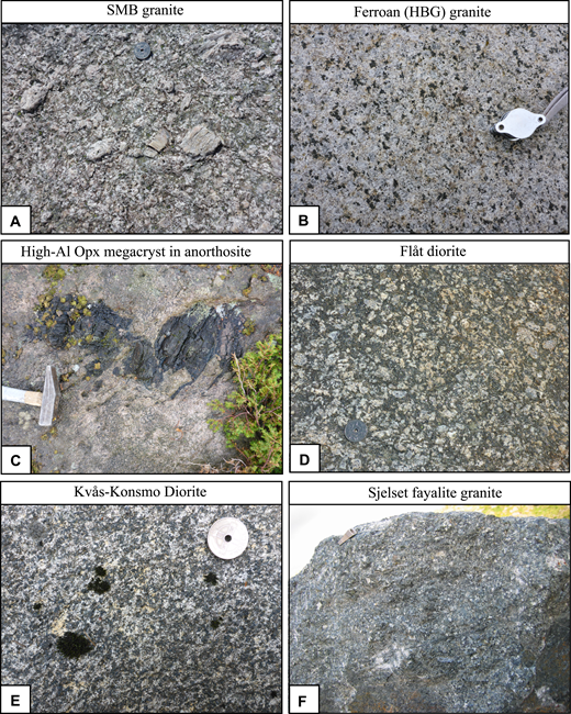 Field photos of Sveconorwegian-age magmatic rocks. (A) Porphyritic granite from the Sirdal Magmatic Belt (SMB). Coin is 21 mm in diameter. (B) Hornblende-phyric granite from the ferroan hornblende-biotite granite (HBG) suite. Hand lens is ∼3 cm across. (C) High-alumina orthopyroxene megacryst from the Egersund-Ogna anorthosite. Hammer head is ∼14 cm long. (D) Flåt diorite, Ni-bearing diorite. Coin is 21 mm in diameter. (E) Kvås-Konsmo diorite, intruding the SMB. Coin is 21 mm in diameter. (F) Sjelset fayalite granite. Pencil sharpener for scale; ∼2 cm long.