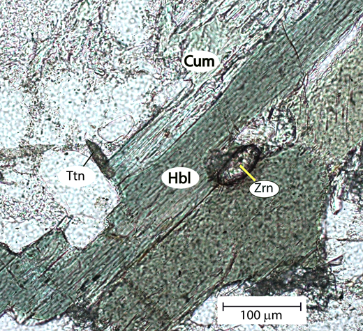 Photomicrograph of hornblende (Hbl), cummingtonite (Cum), and titanite (Ttn) in quartz and plagioclase from 03T5. Garnet is present elsewhere in the slide. Zrn—zircon.