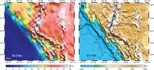 (A) Map of crustal thickness at 36 Ma from integration of strain rates, showing a crustal welt in the western United States, similar to that proposed by Coney and Harms (1984). (B) Topography at 36 Ma from integration of strain rates, showing a high Nevadaplano with average elevation of ∼3.95 ± 0.3 km. Red dots are locations of metamorphic core complexes (Dickinson, 2002). State boundaries are moved from their present-day positions as in Figure 7.