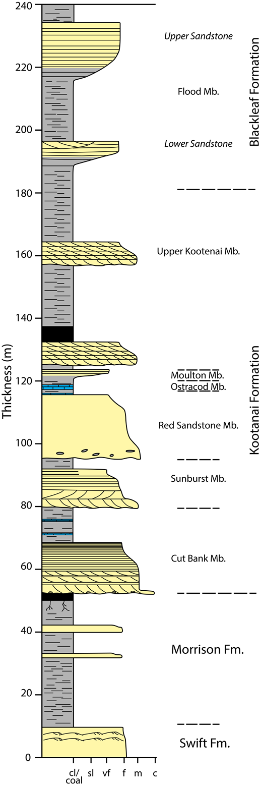 Composite stratigraphic section of the Great Falls, Montana, USA, area. The section was produced with field measurements and published measured sections from Ballard (1966), Cannon (1966), Fox and Groff (1966), Harris (1966), and Walker (1974). c—coarse-grained; cl/coal—clay/coal; f—fine-grained; Fm.—Formation; m—medium-grained; Mb. —Member; sl—silt; vf—very fine-grained. Yellow—sandstone; gray—shale, siltstone; blue—limestone.