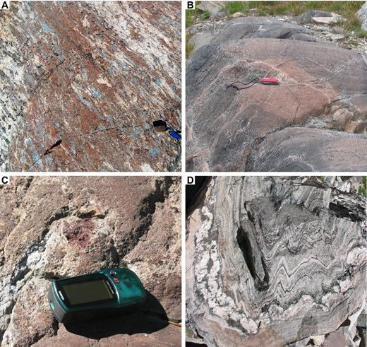 Photos of field relations in the Moose Basin and Layered gneisses. Moose Basin gneiss: (A) kyanite-bearing pelitic gneiss with leucosome interpreted as the result of partial melting during granulite-facies metamorphism; (B) granulite-facies assemblages surrounded by amphibolite in mafic gneiss; (C) partially melted mafic gneiss that contains garnet-bearing leucosomes. Layered Gneiss: (D) folded paragneiss with layers of leucosome.