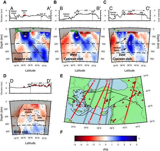 Cross sections through the tomography model at locations oriented downdip of the (A) Aegean slab, (B) west Cyprean slab, (C) east Cyprean slab, and (D) Bitlis-Zagros suture zone. Topography and tectonic features are labeled above the profiles. (E) Map indicating the surface traces of the cross sections. Volcanoes and convergent domains are as in Figures 1 and 4. (F) Color scale for P-wave velocity perturbations. Dashed lines represent interpreted anomaly delineation. Abbreviations are as follows: AS—Aegean slab; BS—Black Sea; BZSZ—Bitlis-Zagros suture zone; CAP—Central Anatolian Plateau; CAVP—Central Anatolian Volcanic Province; CTM—Central Taurus Mountains; EAP—East Anatolian Plateau; EAS—East Anatolian slow anomaly; EC—east Cyprean slab; IA—Isparta angle; IZ—İstanbul zone; NAF—North Anatolian fault; WC—west Cyprean slab.