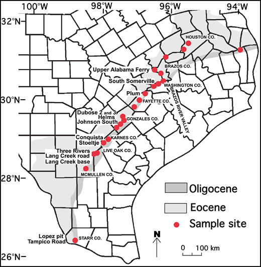 Location of volcanic ash beds sampled on the Texas coastal plains, southern United States for samples and locals cited in this study; unlabeled sample sites are reported in Heintz et al. (2015). Sample names are on the left, county names are on the right. Latitude and longitude were determined from Google Earth using the WGS84 datum. Co.—County.