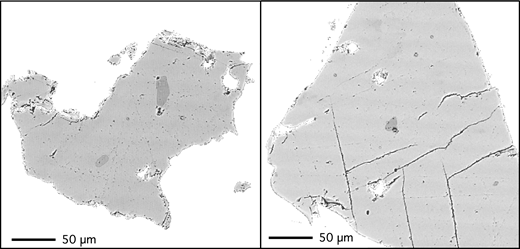 Backscattered electron images of sanidine grain mounts, with tiny inclusions of glass (dark gray blebs within light gray sanidine).