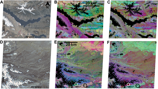 Two different Advanced Spaceborne Thermal Emission and Reflection Radiometer (ASTER) scenes from the Ladakh region. The location of A–C is shown as a blue box in Figure 1, and the location of D–F is outlined by a red box in Figure 1. Images A and D are false color ASTER images provided for reference (they are from U.S. Geological Survey Land Processes Distributed Active Archive Center). In images B and E, we used a 12-11-10 decorrelation stretch. In this stretch, carbonates and ultramafic rocks reflect all bands, and so appear peach and tan (example circled in black on E). Quartz-rich rocks will appear greenish (example circled in white on E), and more mafic rocks will appear more yellow (example circled in yellow on B). In images C and F, we used a 14-12-10 decorrelation stretch, which is ideal for locating carbonate due to its strong absorption feature at band 14. Because carbonate is absorbed at band 14, it manifests as blue-green in this stretch (example shown by a black circle on F). Mafic and ultramafic rocks appear white or washed out (marked by a yellow circle on C), and felsic rocks will appear red (shown by a white circle on F). In D and E, note the crispness of the contact along the Longmu Co fault where the carbonate unit is juxtaposed against silicic rocks (marked with arrows in F).