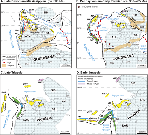 "Paleogeographic setting of Cordilleran exotic terranes of ""Arctic"" affinities. (A) Late Devonian–Mississippian. (B) Pennsylvanian–Early Permian. (C) Late Triassic. (D) Early Jurassic. Diagrams are adapted from Nelson et al. (2013) and are modified to show our preferred alternative positions of the Farewell (FW) terrane (solid outline) with respect to the Arctic Alaska, Alexander, and related terranes; modification in B follows that of Malkowski and Hampton (2014). Blue brick pattern denotes platforms, continental margins, and(or) inactive arcs signified by carbonate or siliciclastic strata. Terranes with ""Arctic"" affinity are shown in yellow. Terranes with Laurentian or Siberian affinity are shown in blue and purple, respectively. Late Paleozoic terranes formed on the western side of the Slide Mountain ocean are shown in green (McCloud belt of Colpron and Nelson, 2011). Gray arrows, where present, show inferred direction of plate motion. Continent abbreviations: AFR—Africa; ARB—Arabia; BAL—Baltica; IND—India; KAZ—Kazhakstania; LAU—Laurentia; MEX—Mexico; SAM—South America; SEU—southern Europe; SIB—Siberia. Terrane abbreviations: AA—Arctic Alaska; AX—Alexander; EK—Eastern Klamaths; FW—Farewell; Ku—Kutcho; NS—Northern Sierras; OK—Okanagan subterrane; OM—Omulevka; PE—Pearya; PN—Peninsular; QN—Quesnellia; RB—Ruby; ST—Stikinia; WR—Wrangellia; YR—Yreka; YT—Yukon-Tanana."