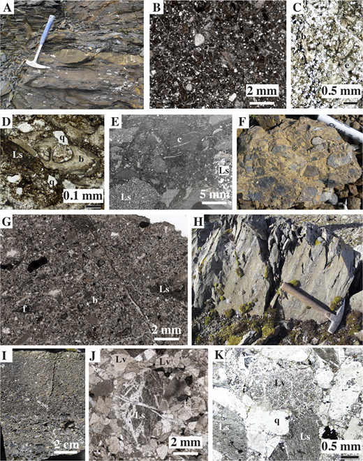 Lithologic features of the upper Sheep Creek Formation of Bundtzen et al. (1997) and lower Mystic assemblage of Malkowski and Hampton (2014), shown in outcrop photographs (A, F, H, I), thin section scans (B, E, G, J), and photomicrographs (C, D, K). See Figure 4 and Table 2 for locations. (A–F) Upper Sheep Creek Formation is fine- to coarse-grained siliciclastic turbidites, seen here at locality (loc.) 4 (in A–D) and samples 12AJJ16A (in E) and 09PH160A (in F). Lithofacies include heterolithic siltstone to sandstone (in B, E), calcareous, fossiliferous sandstone (in C, D), and chert conglomerate (in F); clast types include quartz (q), sedimentary lithic grains (Ls), and carbonate grains (c); fossils include bryozoan (b) and echinoid (e) fragments. (G–K) Lower Mystic assemblage includes a layer of crinoidal grainstone (in G; loc. 7) that contains foraminifers (f) and Pennsylvanian (to Permian?) conodonts (Table 1); flysch in this unit (in H–K; loc. 10) includes graded beds (in I) with notable volcanic lithic grains (Lv).