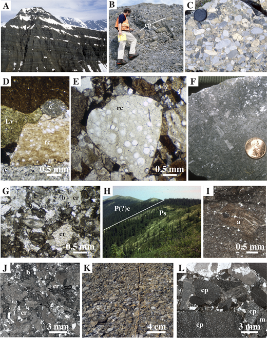 Lithologic features of upper Paleozoic Mystic subterrane rocks, Talkeetna and Medfra quadrangles, shown in outcrop photographs (A–C, F, H, K), photomicrographs (D, E, G), and thin section scans (I, J, L). (A–G) Mount Dall conglomerate, locality (loc.) 11 (Fig. 4): clasts are mostly fine-grained carbonate (white, gray, and tan clasts in B and C; c in D) and chert (black clasts in B and C; rc in D and E [white spheres are recrystallized radiolarians]); subordinate clast types include intraformational conglomerate (cg in B), volcanic lithics (Lv in D), and boulders of bioclastic grainstone (in F, G) which contain crinoid (cr) and bryozoan (b) fragments. Approximate height between base of photo and mountain top in A is 600 m. (H) Permian siliciclastic strata (Ps; loc. 1, Fig. 2) in fault contact with Permian(?) conglomerate (P(?)c; loc. 2, Fig. 2). (I–J) Permian strata include limy layers with fragments of prismatonacreous bivalves (Atomodesma; a in I) as well as bryozoans and crinoids (in J). (K–L) Permian(?) limestone conglomerate contains clasts of silty peloidal grainstone (cp) and metalimestone (m).