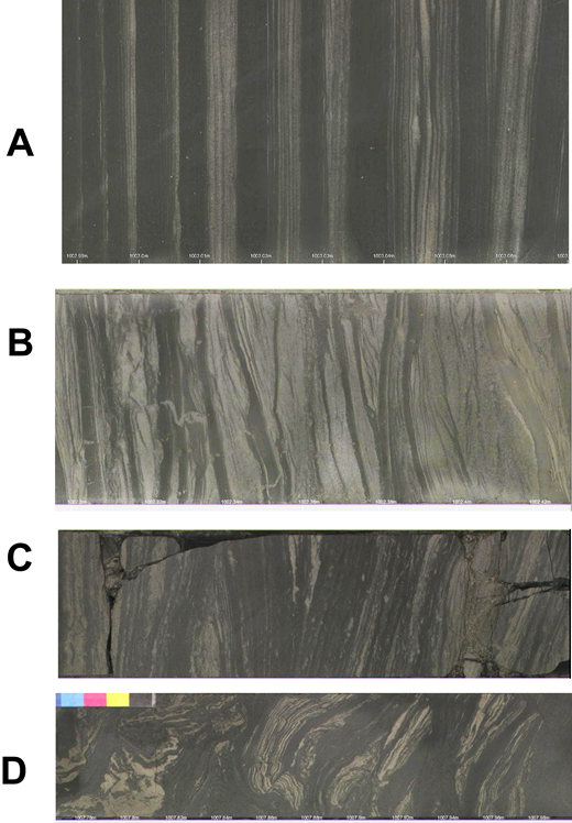 Composite Sequence 2 lithologies showing (A) mm-bedded rhythmites, (B) mud drape couplets, (C) scour, (D) soft sediment deformation.