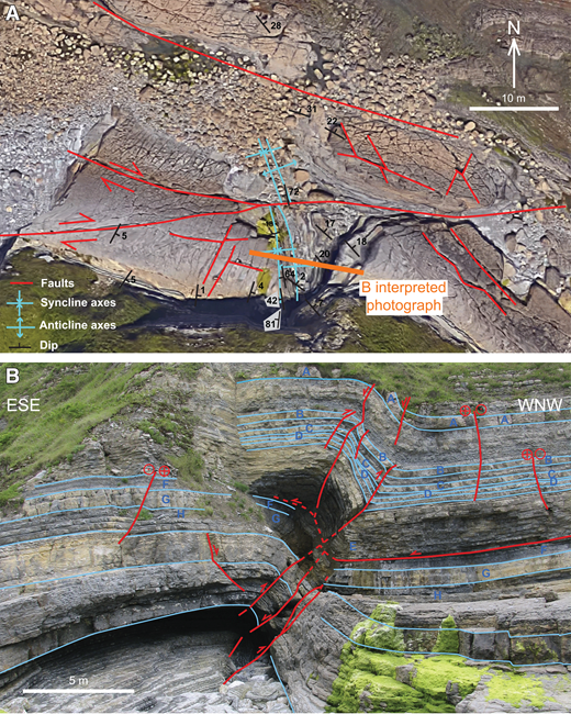 (A) Geological map of the Peñarrubia outcrop and surrounding areas on top of a 2016 Google Earth photograph with location of the photograph illustrated in B. See Figure 1 for location of this map within the Asturian Basin. (B) Photograph of the Peñarrubia outcrop along with its geological interpretation. The structure involves alternations of gray limestones and marls (Buerres Member, Rodiles Formation). Limestones predominate in the lower part of the outcrop, whereas alternations of limestones and marls predominate in the upper part (beds A to H). Blue lines—bedding, red lines—faults.