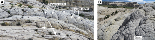 (A) Strongly convex, exposed sheeting joints (to left of and below asterisk) that are controlled by a large-scale (5 m) orthogonal pattern of tectonic joints at Durfey Mesa (37.8872°N, 111.4024°W). (B) View from the asterisk in A, looking back toward camera position for A. Note that the cross-joints visible on each of the exposed sheeting joints also form an orthogonal pattern.