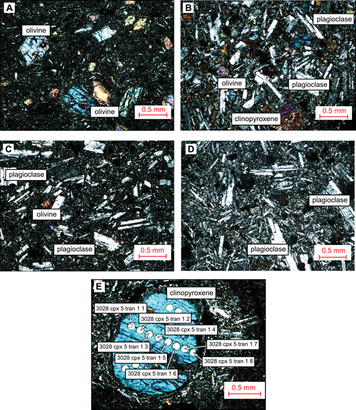Photomicrographs showing the crystal phases of samples from the Galema range including olivine, clinopyroxene, and plagioclase phenocrysts. (A) Sample 3015 (10.21 wt% MgO); (B) sample 3061 (7.94 wt% MgO); (C) sample 3072 (4.86 wt% MgO); (D) sample 3029 (3.28 wt% MgO); and (E) clinopyroxene 5 from sample 3028 (7.15 wt% MgO). Circular impressions are locations where some of the laser ablation–inductively coupled plasma–mass spectrometry (LA-ICP-MS) analyses were performed. Labels indicate individual analyses of a transect, corresponding to data in Supplemental Tables (text footnote 1).
