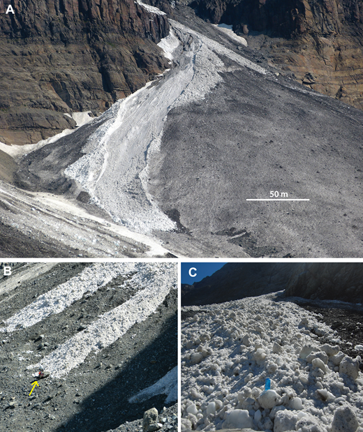 Ice avalanche morphology. (A) Large ice avalanche on Middle Fan at McCarthy Glacier moments after deposition on 24 June 2015. Note the abundant boulder-sized ice clasts, bright albedo, prominent levees, and straight terminus. Extensive levee overrun deposits on the outer bends are visible just below the fan apex after the avalanche emerged from the catchment. Note the darker surface on the remainder of Middle Fan, where sediment was concentrated by ice ablation in the weeks following earlier avalanches. The distal margin of West Fan is visible in the left foreground. (B) Recent (previous day or two) twin ice avalanche deposits near the terminus of Fan 1, at Mueller Glacier in March 2014. Note the person (near yellow arrow) for scale at the terminus of the avalanche on the right. (C) View up-fan from the base of the right avalanche in B (water bottle for scale).