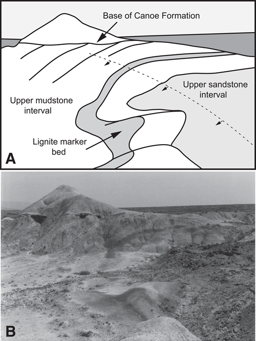 Field sketch and photograph showing unnamed monocline on south side of Tornillo Flat, west of the Park Highway (see Figs. 15 and 21) in Hannold Hill Formation. (A) Field sketch showing monocline in upper sandstone and mudstone intervals of Hannold Hill Formation, and overlying undeformed Canoe Formation resting unconformably on truncated fold; (B) photograph taken from same vantage point.