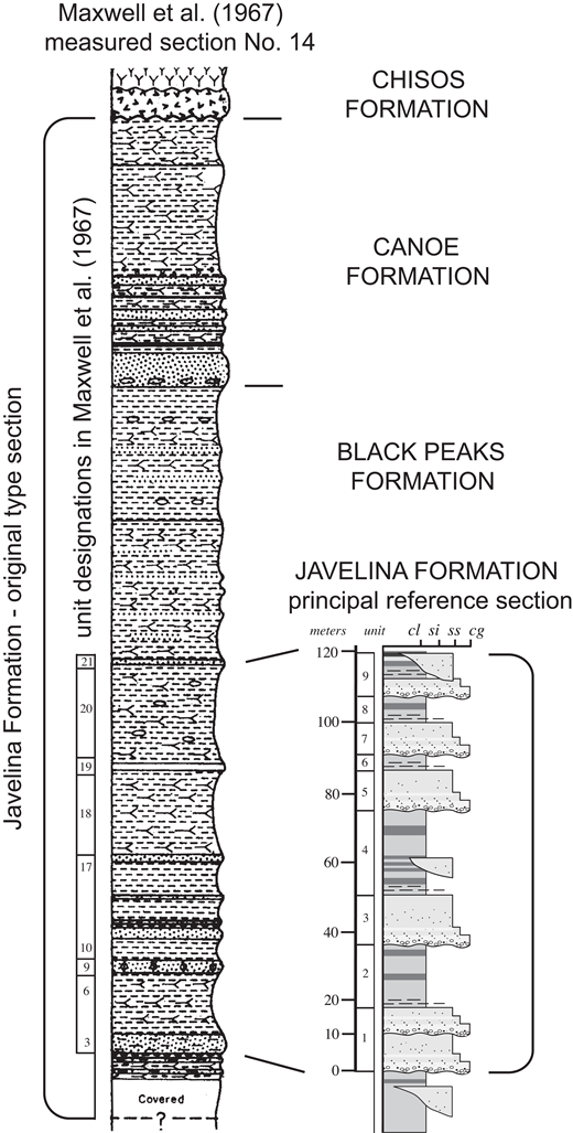 Original type section of the Javelina Formation (left, modified from Maxwell et al., 1967) showing unit numbers corresponding to the original description and correspondence with stratigraphic units recognized in the present study; on right is shown the principal reference section for the Javelina Formation measured for the present study (Dawson Creek, section 1). cl—claystone; si—siltstone; ss—sandstone; cg—conglomerate.
