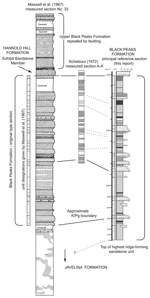Original type section of the Black Peaks Formation (left, modified from Maxwell et al., 1967) showing unit numbers corresponding to the original description and correspondence with stratigraphic units recognized in the present study; section measured in the same area by Schiebout (1974); and (right) the principal reference section for the Black Peaks Formation measured in the same area for the present study (section 12); approximate level of the Cretaceous/Paleogene (K/Pg) boundary recognized as original base of formation versus top of highest ridge-forming sandstone of Javelina Formation recognized in the present study. cl—claystone; si—siltstone; ss—sandstone; cg—conglomerate.