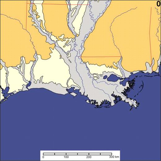 Animation 2. Hypothetical evolution of the Mississippi River delta through the next glacial maximum. Apart from the plausible guess that the next cycles of delta growth will be in the coastal bight west of the present delta, locations of deltas and channels are purely speculative for the purpose of showing the complexity of future geology and the relationship between eustasy and delta formation. Pliocene and older deposits are shown in peach, Pleistocene deposits in cream, and Holocene deposits in light gray. Recent deltas at each 10 ka interval are shown brightly colored, and older delta complexes are in subdued tones. If you are viewing the PDF, or if you are reading this offline, please visit www.gsajournals.org or http://dx.doi.org/10.1130/GES00012.S2 to view the animation.