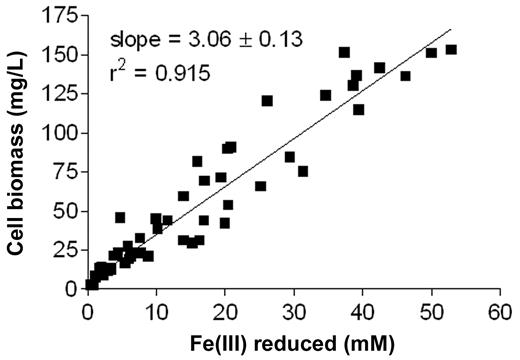 Figure 2. Growth yield of Geobacter metallireducens with Fe(III)-citrate (5–100 mM) as an electron acceptor and excess acetate (20 mM) as a carbon and energy source in batch culture. Each data point represents the average of triplicate culture tubes.