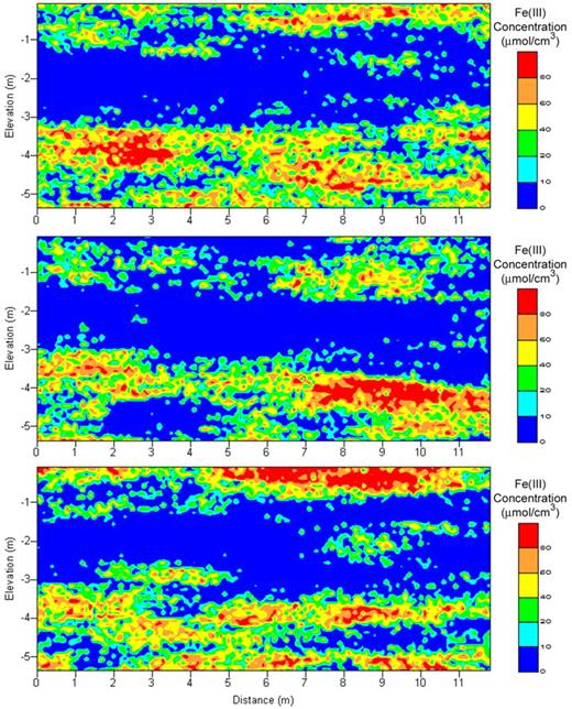 Figure 11. Three selected realizations of Fe(III) conditioned to core data and hydraulic conductivity simulations shown in Figure 10, but not conditioned to geophysical observations.