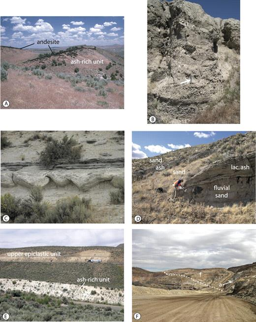 Figure 8. Photographs of middle Miocene sedimentary units in the Carlin basin. A: Thin andesite flow units underlain by ca. 15.1 Ma, ash-rich strata (white); sediments of the upper epiclastic unit (not shown) overlie the andesite. Faulting and tilting occurred after basin sedimentation. Photo taken looking north along the west side of the Adobe Range. B: Sand, pebbles, and cobbles in braided stream and channel deposits of the basal epiclastic member; hammer for scale. Photo taken east of the Cottonwood Gulch area in the northwestern part of the basin. C: Soft-sediment deformation in the ash-rich unit along the west side of the Adobe Range. The deformed bed is ∼1 m thick. D: Alternating fluvial, epiclastic sand beds and lacustrine ash-rich beds of the mixed epiclastic and ash-rich unit. The thick ash bed being sampled was deposited at 16.3 Ma. The underlying sand bed fills a 2-m–deep channel just to the right of the photo. Photo taken along upper Susie Creek in the northeastern part of the basin. E: Contact between the ash-rich unit (white) and the upper epiclastic unit (tan) along Interstate 80 west of Carlin. A tephra in the ash-rich unit near where the photo was taken produced a 14.7 Ma correlation age. The contact is conformable and, where exposed, sharp. F: The upper epiclastic unit (f) and a local zone of the underlying ash-rich unit (a, arrow), both of which overlie weathered and oxidized Paleozoic sedimentary rocks and the Gold Quarry gold deposit in the left side of the photo. The dashed white line delineates the sediment-bedrock contact. Photo taken looking north in the Gold Quarry mine on the west side of the Carlin basin.