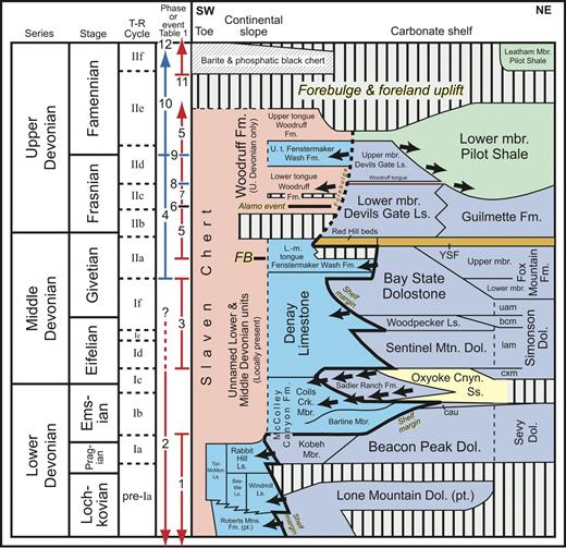 Figure 4. Northeast to southwest, Devonian time-rock transect across central and eastern Nevada (transect line shown in Fig. 3), showing carbonate-shelf, continental slope, and toe lithostratigraphic units and relative lateral shifts in shelf margin through time. Main phases or events in shelf-margin development (Table 1) are delineated: vertical blue lines denote eustatic changes; vertical red lines denote tectonic changes. Transgressive-regressive (T-R) cycles Ia–IIf (Johnson et al., 1985, 1991; Johnson and Sandberg, 1989), main intervals of turbidity current and debris-flow deposition (arrows), proto-Antler forebulge initiation (FB), and timing of Alamo Impact Event are indicated. Silty dolostone and siltstone of the yellow slope-forming member (YSF), which forms the basal unit of the Guilmette Formation and Devils Gate Limestone, constitute a widespread marker lithology distributed throughout western North America (Sandberg et al., 1989, 1997, 2002). The YSF is herein correlated with fish-bearing Red Hill beds in north-central Nevada. Four members of Simonson Dolostone: cxm—coarse crystalline member; lam—lower alternating member; bcm—brown cliff member; and uam—upper alternating member. Other abbreviations: cau—cherty argillaceous unit; Cnyn.—Canyon; Crk.—Creek; Dol.—Dolostone; Fm.—Formation; L.—Lower; Ls.—Limestone; m.—middle; mbr.—member; McMon.—McMonnigal; Mtns.—Mountains; pt.—part; Ss.—Sandstone; t.—tongue; U.—Upper. Modified from Johnson and Sandberg (1977), Johnson and Murphy (1984), Johnson et al. (1996), and M.A. Murphy (14 September 2007, personal commun.), with additional data from Sandberg et al. (1989, 1997, 2002, 2003) and our personal observ.