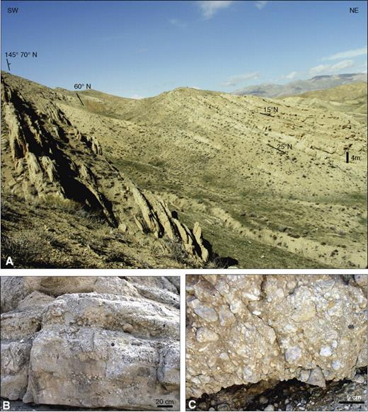 Photograph of the Pliocene conglomerates. (A) View of hillside showing progressive decrease in rotation of bedding upsection due to folding occurring during deposition. The conglomerates are composed predominantly of Qom Formation clasts (B and C). See Figure 2A for location.