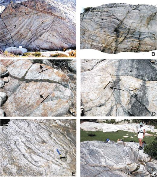 Schlieren-bounded troughs in the Tuolumne batholith largely made of granodiorite magma or their fractionated and/or accumulated components. (A) Moderately plunging trough sets younging to left in photo (see numbers) in the Sawmill Canyon area discussed in Paterson et al. (2008). Note magmatically folded troughs near 1 and magmatic fault in troughs below 2. All schlieren show grading. K-feldspar megacrysts occur in all three sets, showing best alignment at the base of schlieren and less so in felsic layers. Map case at base is ~20 cm long. (B) Gently plunging troughs also in Sawmill Canyon area that young upward. The late leucocratic dikes and some layers rich in K-feldspar megacrysts (lower right in photo) are intruded from the nearby Cathedral Peak granodiorite (CP) unit. Blue hammer is ~20 cm long. (C, D) Steeply plunging troughs exposed in subhorizontal surfaces in CP. Note truncations of schlieren layers at the base of younger troughs. These truncations indicate that erosion of older troughs occurred during magma flow in younger troughs followed by renewed deposition in the younger trough. Cutoffs also indicate direction of younging measured in this study as pole to tangent of plane parallel to younger schlieren at truncation of older (symbols in C). Troughs in CP younging to left in photos; ~25 cm hammer for scale. (E, F) Subhorizontally trending troughs exposed in three dimensions in the Sawmill Canyon area. Some late magmatic folding and local diapiric movement locally deform schlieren; 25 cm hammer for scale in E.
