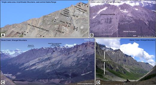 Photographs of the base of the Nikolai Formation in the Alaska Range and Wrangell Mountains, Alaska (locations shown in Fig. 3). (A) Sediment-sill complex and base of flood basalts on the west side of Lower Tangle Lake. (B) Photograph of the top of the Nikolai Formation and overlying Chitistone Limestone (taken by Ed MacKevett, Jr.). Several faults offset the contact. (C) Paleozoic arc rocks and marine sedimentary sequences underlying Nikolai basalts. Photograph by Ed MacKevett, Jr. (Phc—Hasen Creek Formation; Pgh—Golden Horn Limestone Lentil; TRd—Middle Triassic Daonella beds). (D) Photograph of ∼1000 m of subaerial basalt flows overlain by Chitistone Limestone (dashed orange line indicates the contact).