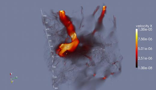 Animation associated with Figure 3B. Streamlines show the tortuous fluid trajectory through the largest channel. The radiation color gradient indicates the velocity in the x-direction. All quantities are in nondimensional lattice units. This animation can be viewed with QuickTime Player, Windows Media Player, or VLC. If you are viewing the PDF of this paper or reading it offline, please visit http://dx.doi.org/10.1130/GES00555.S2 or the full-text article on www.gsapubs.org to view Animation 2.