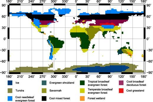 Reconstructed Miocene vegetation based on Wolfe (1985) with amendments from published data (Bialkowski et al., 2006; Christophel and Greenwood, 1989; Ducrocq et al., 1994; Graham, 1987; Ivanov et al., 2002; Jacobs, 2004; Kemp, 1978; Lear et al., 2000; Martin, 1990; Martin, 2006; Mildenhall, 1980; Pekar and DeConto, 2006; Sluiter et al., 1995; Wynn and Retallack, 2001).