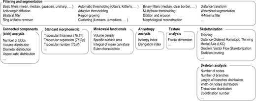 Pore3D module architecture for quantitative analysis of 3D images. The modules are named in bold characters and the possible choices are grouped in the specific boxes.