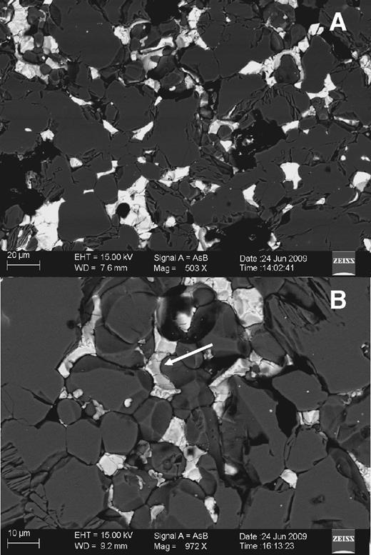 Backscattered electron images of sample B, as synthesized. Bright areas are Fe-Ni-S quenched melts, which appear along grain boundaries of the silicate (pure olivine in this case). Some melts appear to form channels (arrow in B). In B, many olivine grain boundaries show tubular channels, presumably caused by losing Fe-Ni-S during polishing.