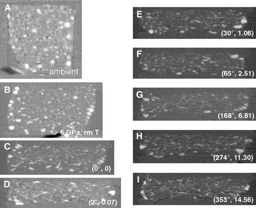 Virtual thin sections from tomographic images for sample A. (A) Ambient condition, before compression. (B) 6 GPa, room temperature (rm T), before heating. (C–I) After heating to 700 K and twisting at various angles. Values in parentheses are twisting angle and shear strain. Bright contrasts are Fe-Ni-S inclusions imaged. Note the development of linear features as shear strain increases. Rotation/compression axis is vertical in all the images. The initial horizontal dimension (A) is 1 mm.