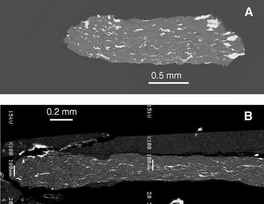 Backscattered electron images of sample A (A) and sample B (B), recovered after the high-pressure–high-temperature tomography experiment. Sample A can be directly compared with the last virtual thin section in Figure 7. High-pressure–high-temperature tomography has captured most of the features. The rotating axis is vertical for torsional shear generation.