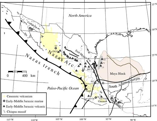 Reconstruction of the Gulf of Mexico region and the Nazas arc for ca. 195–165 Ma. The trend of the arc extends from its type locality in Durango (DGO) to its easternmost exposure at Huizachal canyon (HUI). Other symbols are Early to Middle Jurassic marine localities: SR—Sierra Santa Rosa, Sonora; SP—Pelayo Formation, Olivos valley, Chihuahua; EA—El Alamito, San Luis Potosí; HU—Huayacocotla, Puebla. Symbols for other localities mentioned in the text: PV—Pueblo Viejo, Chiapas; LS—La Silla, Chiapas; UZ—Uzpanapa; tt—Chiapas-Tamaulipas transform; TX—Tlaxiaco Basin.