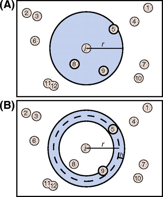 Schematic two-dimensional illustration of measurement regions for the L′ function, and PCF/MCF (pair correlation function/mark correlation function). (A) L′ function: for each crystal i in the sample, each other crystal j whose center is within a sphere of radius r (shaded circle) centered at crystal i is counted. In this illustration, the crystals outlined in bold (j = 5, j = 8, and j = 9) will be counted in the summand for crystal i; the others will not. (B) PCF and MCF: for each crystal i in the sample, each other crystal j whose center is within a spherical annulus (shaded ring) of thickness 2h and radius r centered at crystal i is counted. In this illustration, the crystals outlined in bold (j = 5 and j = 9) will be counted in the summand for crystal i; the others will not. For the MCF, the sizes of the crystals are also taken into account. After Hirsch et al. (2000).
