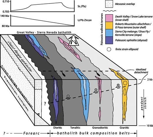 Block diagram illustrating petrologic, isotopic, and age zonation of the Sierra Nevada batholith and the distribution of Paleozoic wall-rock terranes and infolds of lower Mesozoic sedimentary and volcanic protolith sequences immediately prior to Late Cretaceous extensional collapse and activity of the southern Sierra detachment.
